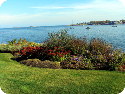 Picture of garden bed overlooking Marblehead Harbor and Lighthouse